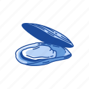 clam, mollusc, mollusk, mussel, pear mussel, shell icon