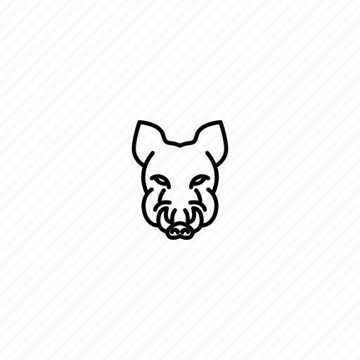 animal, boar, character, face, head, jungle, wild icon