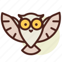 cinema, film, hollywood, owl