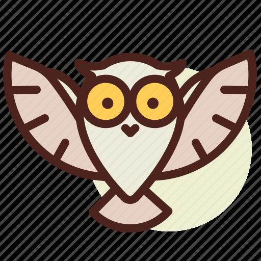 cinema, film, hollywood, owl icon