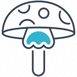 agaric, fly, food icon