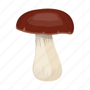 cep, delicacy, food, mushroom, porcini icon