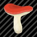 delicacy, food, mushroom, russula icon