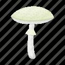 amanita, fungus, mushroom, nature, plant, toadstool, toxic icon