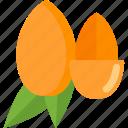 acorn, food, mushrooms, nut icon