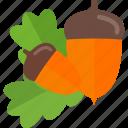 acorn, mushrooms, nut, sheet icon