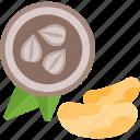 acorn, food, mushrooms, seed icon