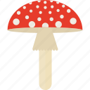 agaric, fly, forest, harm, mushrooms icon