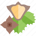 food, green, mushrooms, sheet icon