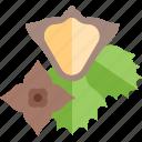 food, green, mushrooms, sheet icon