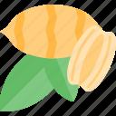 corn, food, mushrooms, nut icon