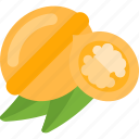 acorn, food, mushrooms, nuts icon