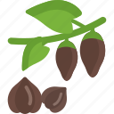 food, mushrooms, seed, sheet, stalk icon