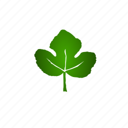 growth, leaf, life, natural, nature icon
