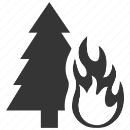 burn, danger, disaster, fire, flame, forest, hazard, natural, risk icon