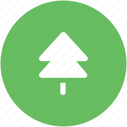 ecology, fir, fir tree, forest, nature tree, pine tree, spruce icon