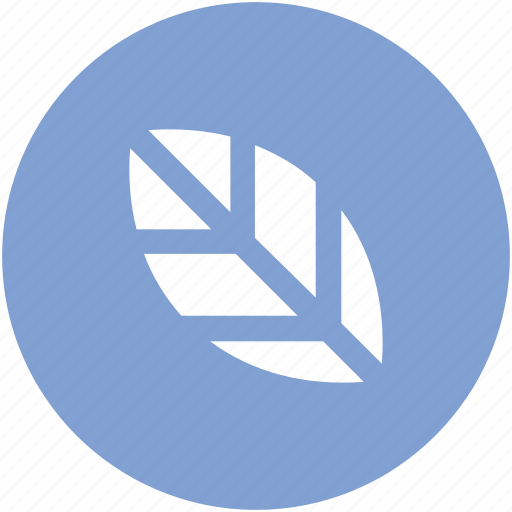 agriculture, eco, ecology, environment, green foliage, greenery, leaf, nature icon