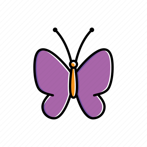 animal, butterfly, nature icon