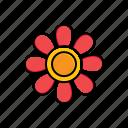 flower, garden, nature