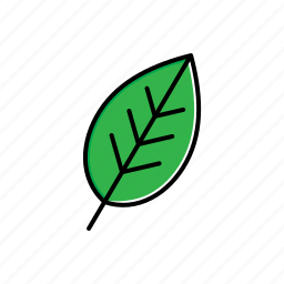 garden, green, leaf, nature icon