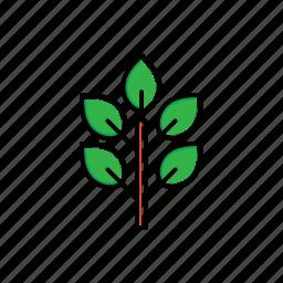 garden, green, nature, sapling icon