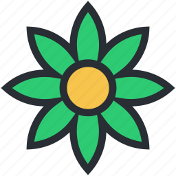 bloodroot flower, blossom, flower, nature, spring flower icon