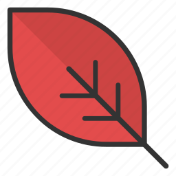 ecology, foliage, greenery, leaf, tree branch icon