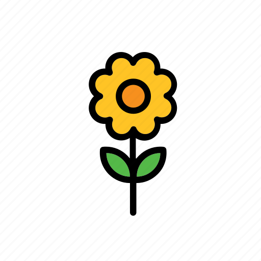 flower, natural, nature, sunflower, world icon