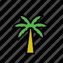 natural, nature, palm tree, tree, world icon