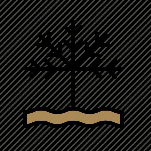 grape, grapevine, natural, nature, vine, vineyard, wine icon