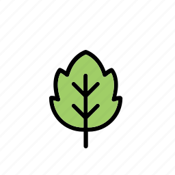 leaf, natural, nature, world icon