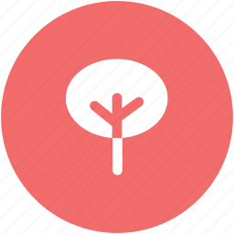 agricultural, ecology, evergreen, nature, plant, shrub tree icon