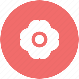 blossom, flower, flower and leaf, flower leaf, nature and ecology icon