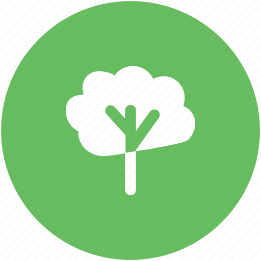 eco, ecologism, forest, natural, tree, yard tree icon