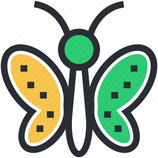 Beautiful insect, butterfly, colorful insect, insect, moth icon - Download on Iconfinder