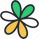 bloodroot, bloodroot flower, blossom, flower, spring flower icon