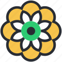 chinese flower, decorative flower, design element, flower, nature icon