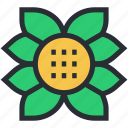 decorative flower, flower, flower beauty, generic flower, creative flower
