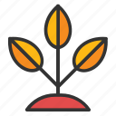 leaf, leaflet, leaves, plantation, sapling twig leaf icon