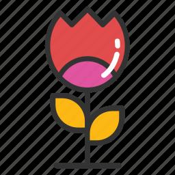 flower, spring blooming, spring flower, tulip, tulip bud icon