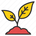 baby tree, saplings, seedlings, tree sapling, young tree icon