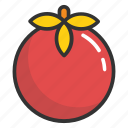 food, organic food, raw food, tomato, vegetable icon