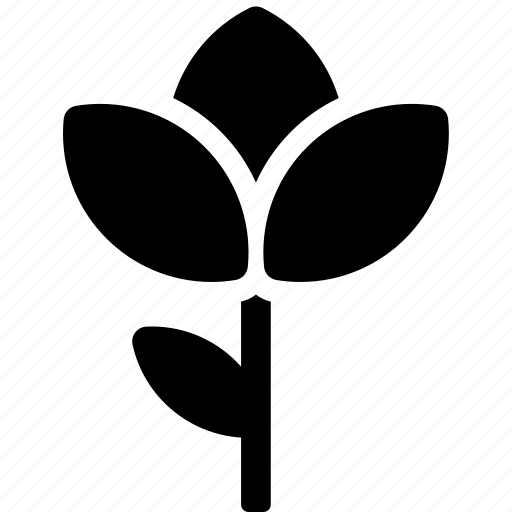 flower, garden, growth, leave, nature, plant icon
