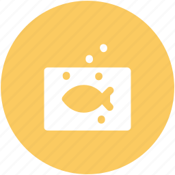 decor, fish, fish aquarium, fish tank, gold fish icon