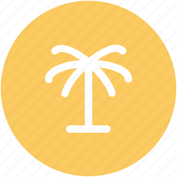 arecaceae, date palm, date tree, desert, palm, palm tree icon
