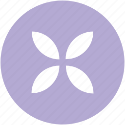 amaryllis, amaryllis flower, ecology, floral, nature, pink, pink amaryllis icon