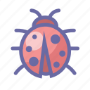 bugs, ecology, fly, insect, ladybird, nature icon