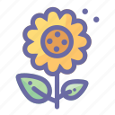 blossom, flower, leaves, nature, plant, sunflower icon