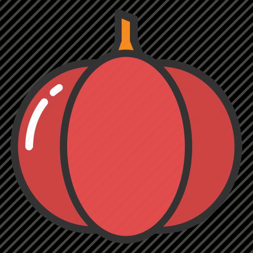 argyrosperma, cucurbita pepo, moschata squash, pumpkin, squash plant icon