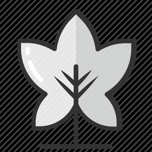 fir tree, gardening, greenery, nature, tree icon